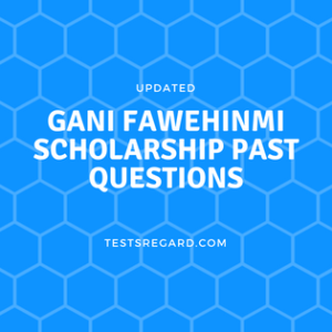 gani fawehinmi scholarship past questions